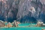 Plongées au Lavandou