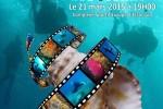 Festival de L'Image Sous Marine des Yvelines 2015 !