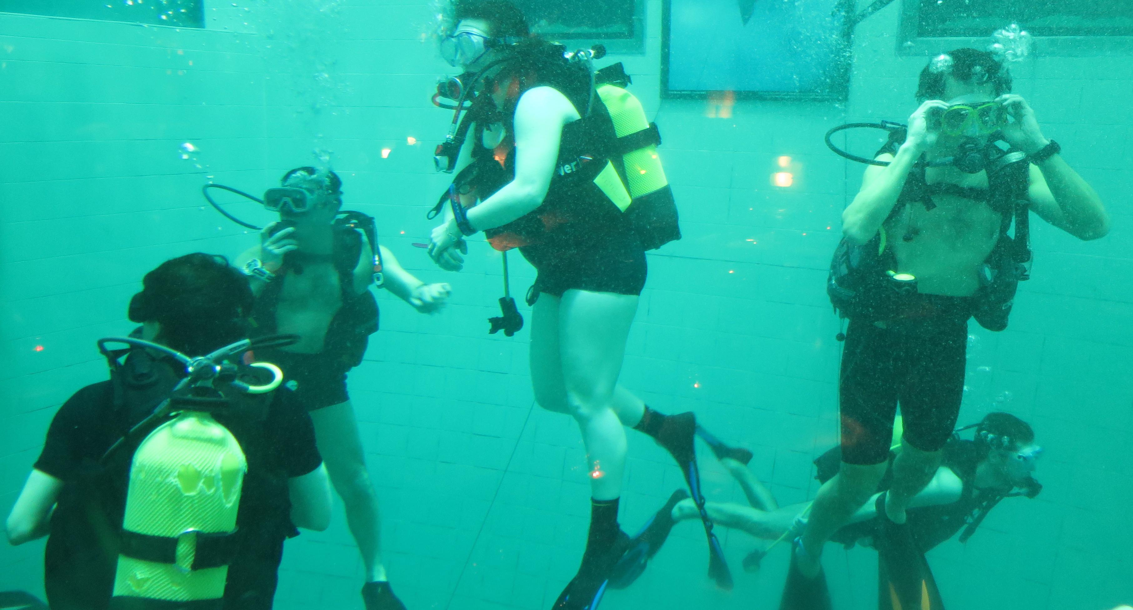 Plongée à NEMO 33